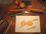 Clémentines de Corse - Crayons de couleurs - Novembre 2012
