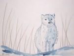 Animal des pays froids - Aquarelle et feutre - Novembre 2013