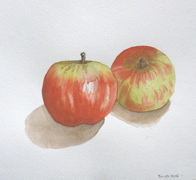 Pommes - Aquarelle - Septembre 2015