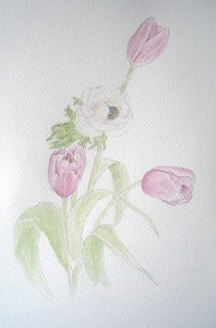 Tulipes - Aquarelle - Mars 2016