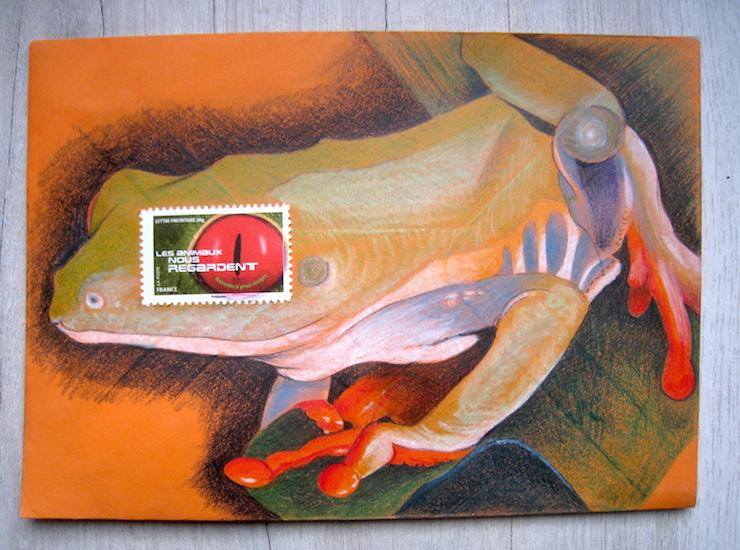 Rainette aux yeux rouges - Crayons de couleur - Juillet 2016
