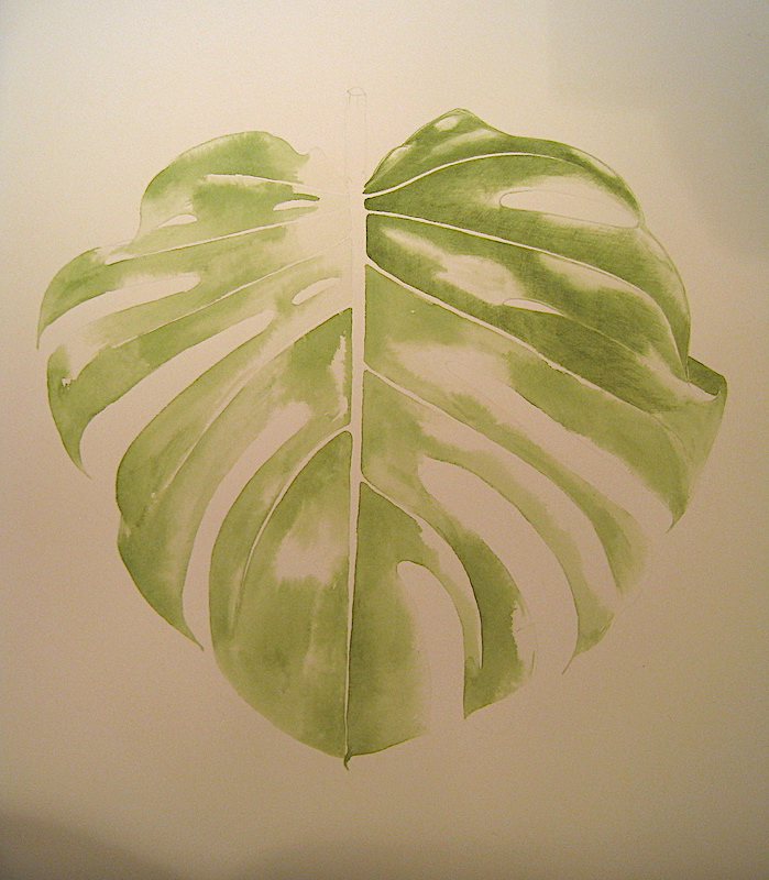 Monstera - Aquarelle - Fevrier 2017