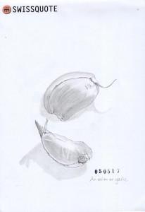 EDIM-05