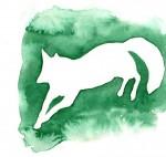 52 nuances de renard
